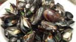 A bowl of mussels -- sweet little morsels of magnificent tenderness.